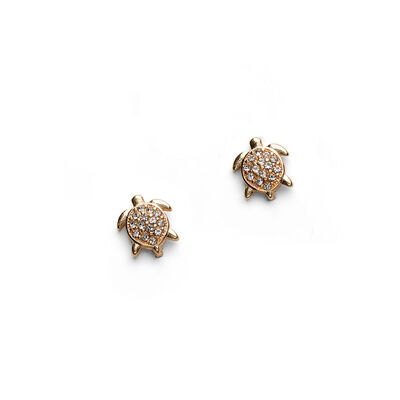 Wild and Free Claw Pin Slim Crystal 2